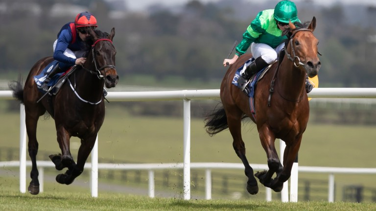 Khartoum, half-brother to the Group 1-placed Monarch Of Egypt, makes his debut