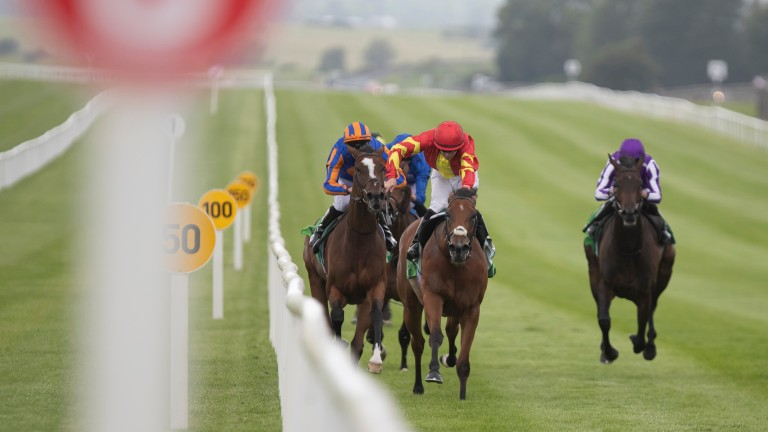 Iridessa and Wayne Lordan win the Juddmonte Pretty Polly Stakes at the Curragh