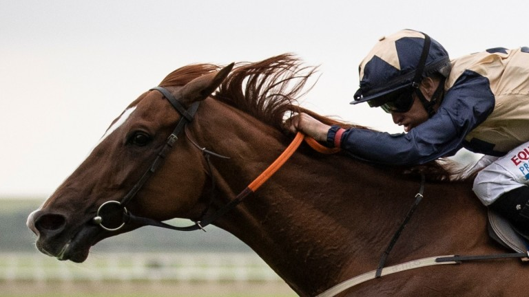Agent Zigzag and Niall McCullagh: winners at the Curragh on Friday