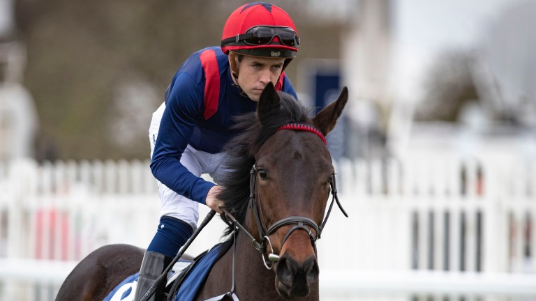 Leigh Roche: rides Stratum in the Northumberland Plate