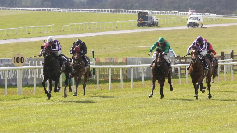 Windsor Palace (left) shocks stablemate St Nicholas Abbey (right)