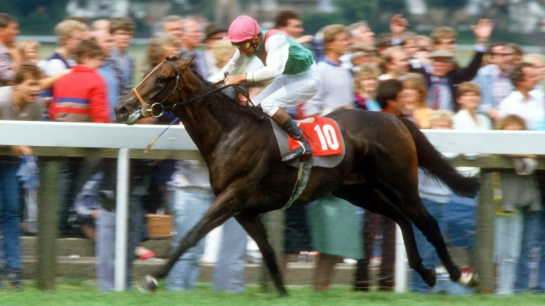 Dancing Brave: bounced back from Derby defeat with impressive win in the Eclipse in 1986