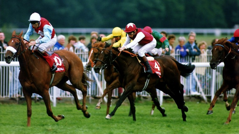 Kooyonga (front): winner of the Eclipse in 1992