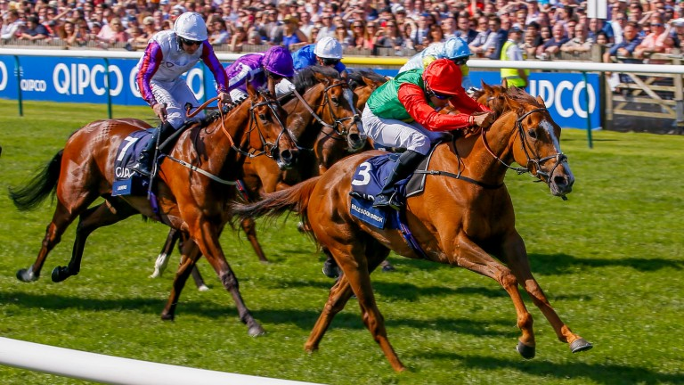 Billesdon Brook (right): last year's 1,000 Guineas winner carries a penalty for a Listed win at Chelmsford