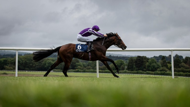 Year Of The Tiger bounds clear in the Irish Stallion Farms EBF Maiden at Naas