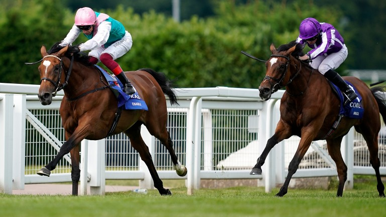 Enable: set to return in the Coral-Eclipse, the same race she won on reappearance last season