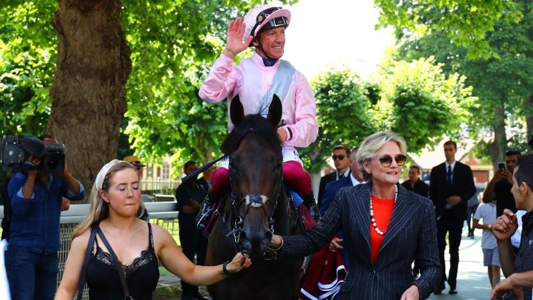 Too Darn Hot: reopposes his Royal Ascot conqueror at Goodwood