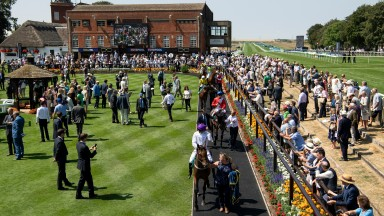 Runners in the parade ring at the picturesque July course at Newmarket