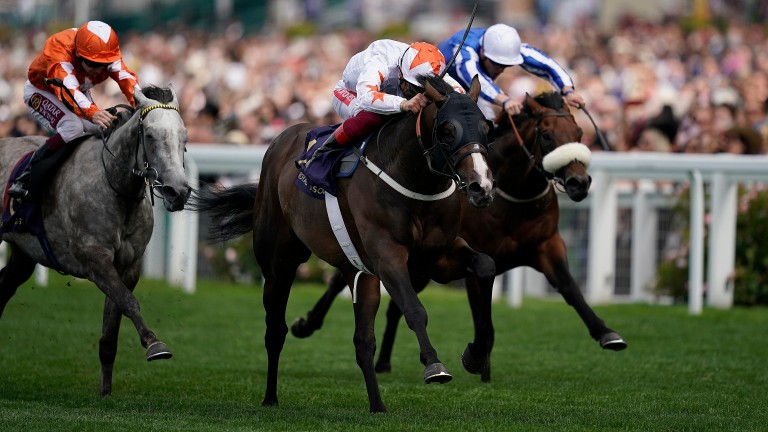 Advertise: could take on Ten Sovereigns again next month
