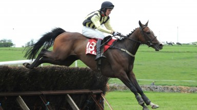 Clonakilty PTP 25-5-08.  SEE DOUBLE YOU and Ciaran Fennessy pops the last to win for trainer Eugene O'Sullivan.Photo HEALY RACING.