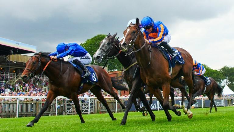 Royal Lytham (near side) won last season's July Stakes
