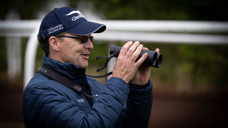 Aidan O'Brien: takes aim at the Brownstown Stakes, the only Group race in Ireland missing from his CV