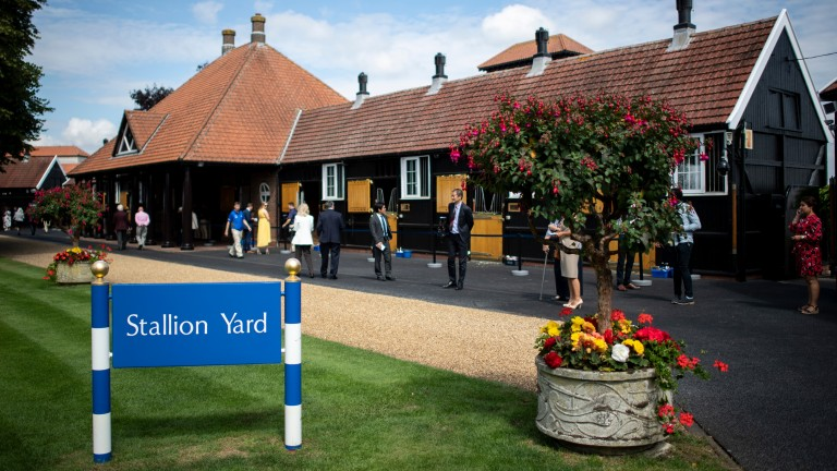 Dalham Hall: Sheikh Mohammed's stud hosted the three-day forum to promote racing worldwide
