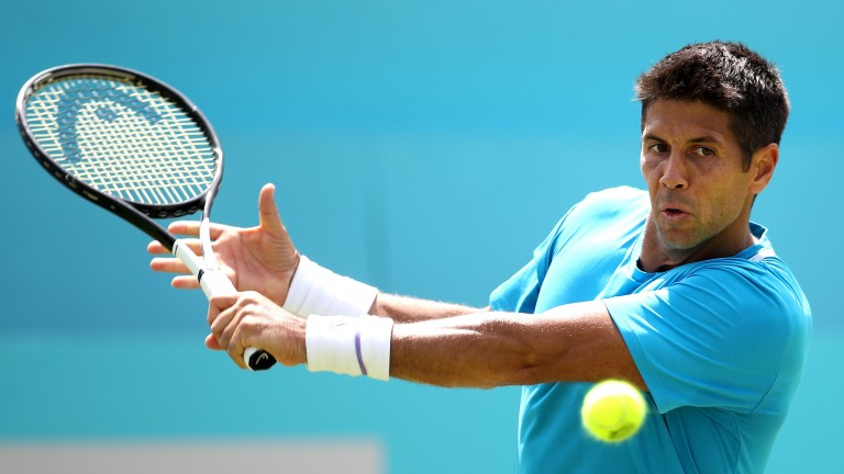 Fernando Verdasco's game has looked in decent nick on grass courts in recent weeks