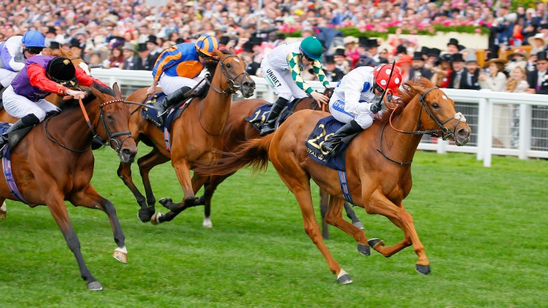Thanks Be wins the Sandringham to give Charlie Fellowes his first Royal Ascot winner