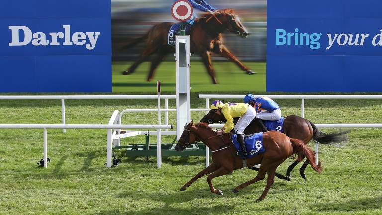 Not a moment too soon: Sea Of Class gets up to win the Irish Oaks