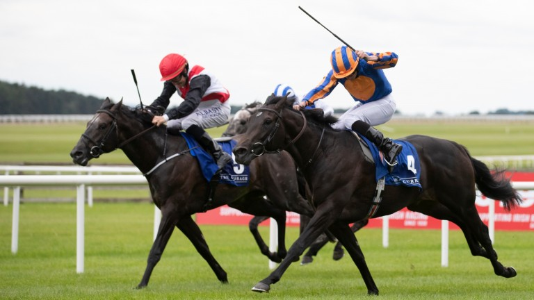 Iberia: winning his maiden at the Curragh