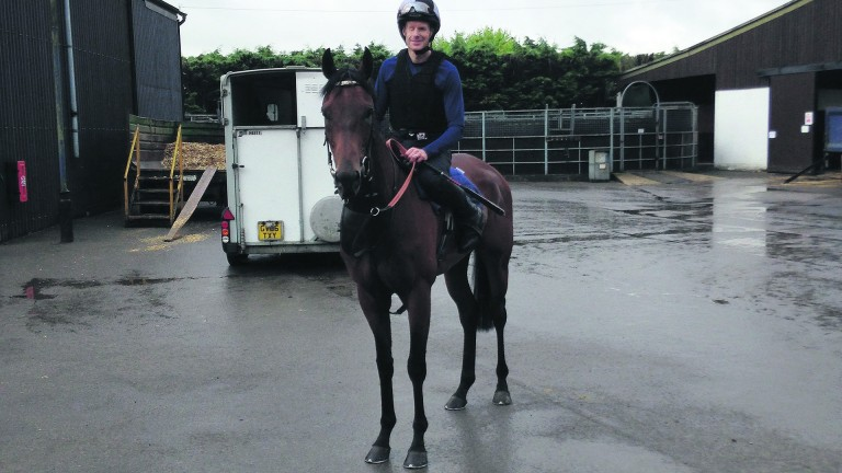 Guy Mitchell, pictured aboard Banksy's Art, one of the horses he has been riding for Amanda Perrett in preparation for his racecourse debut