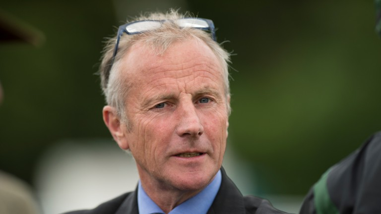 "Rod Millman: ""The market for cheaper horses has been taken away"""
