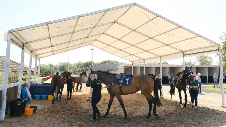Southwell used a marquee with cooling fans to try and keep the horses cool before racing