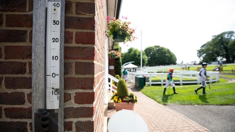 Mercury rising at Sandown as jockeys head out to race