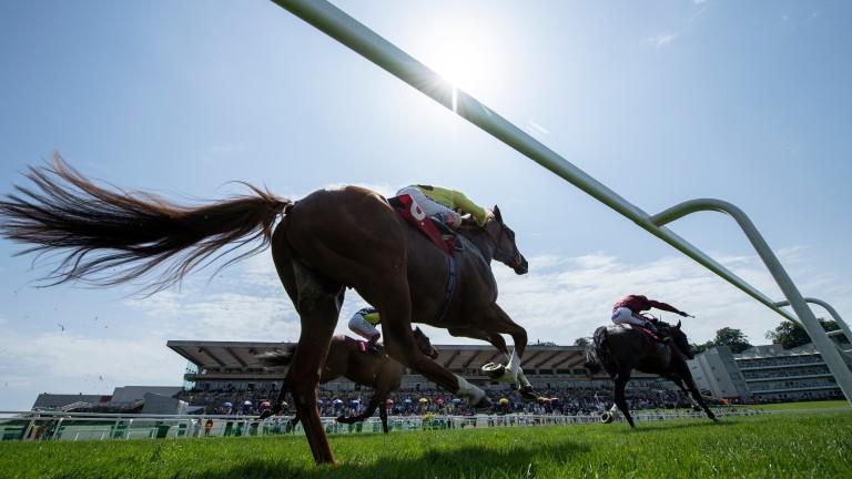 In the glaring sunshine, Kameko (Oisin Murphy) wins the 7f maiden at Sandown