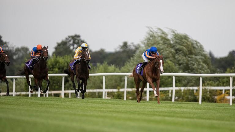 Love in splendid isolation in the Jockey Club Of Turkey Silver Flash Stakes