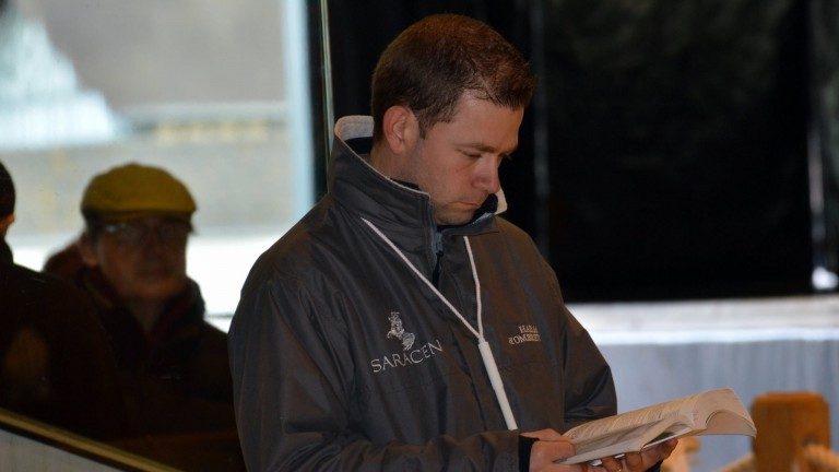 Matthieu Gouesnard has built up Haras d'Ombreville since buying a farm in Normandy in 2011