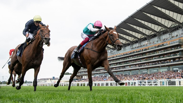 Can two become three? Enable bids to become a triple winner of the King George following last year's epic battle with Crystal Ocean