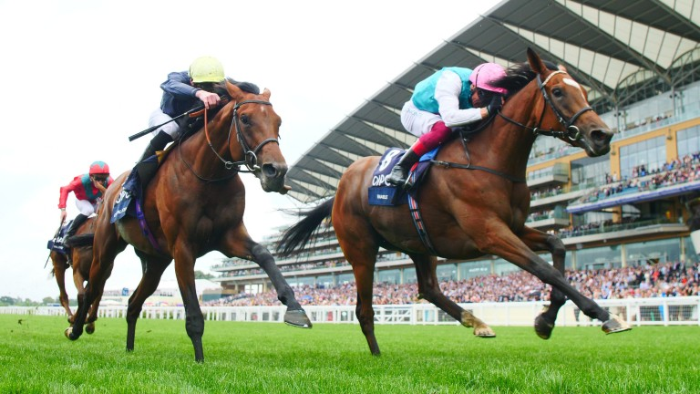 Crystal Ocean was narrowly beaten by Enable in a thrilling King George