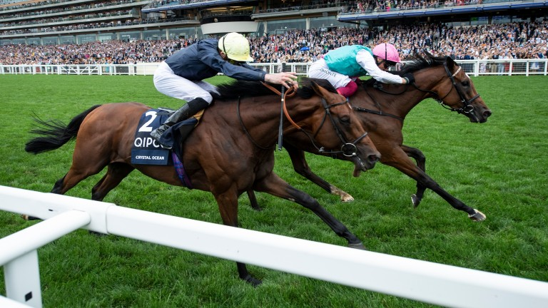 Crystal Ocean's King George battle with Enable will live long in the memory