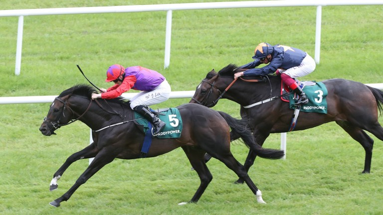 Romanised (in front) defeats Hey Gaman in the Minstrel Stakes at the Curragh