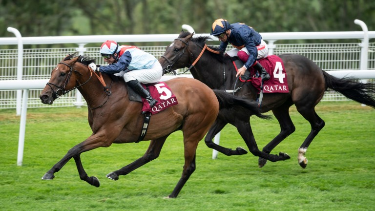 Sir Dancealot beats Hey Gaman to land his second Lennox Stakes