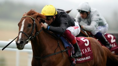 CHICHESTER, ENGLAND - JULY 30: Frankie Dettori riding Stradivarius win The Qatar Goodwood Cup Stakes at Goodwood Racecourse on July 30, 2019 in Chichester, England. (Photo by Alan Crowhurst/Getty Images)