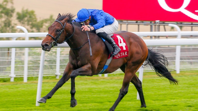 Pinatubo: produced a scintillating performance in the Vintage Stakes