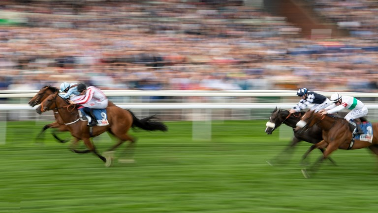 The Mackem Bullet (near side) was only edged out by Fairyland in last year's Lowther Stakes