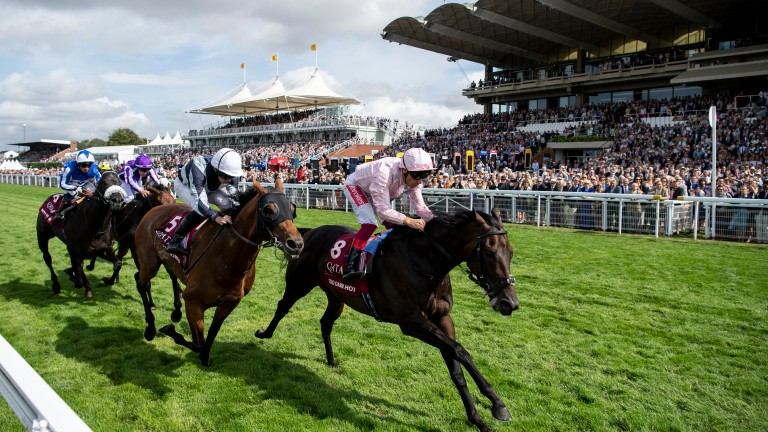 Too Darn Hot (pink): records a third top-level success in the Sussex Stakes