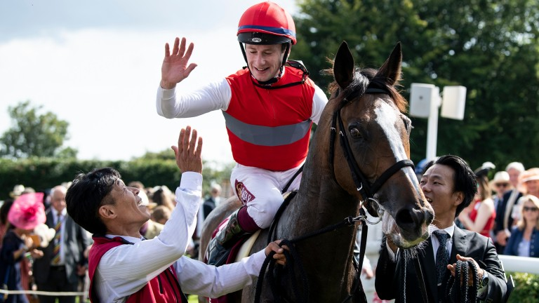 Connections of Goodwood winner Deirdre are targeting the Irish Champion Stakes
