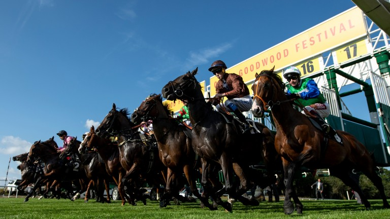 Glorious Goodwood: ITV's coverage kicks off with an 18-runner handicap