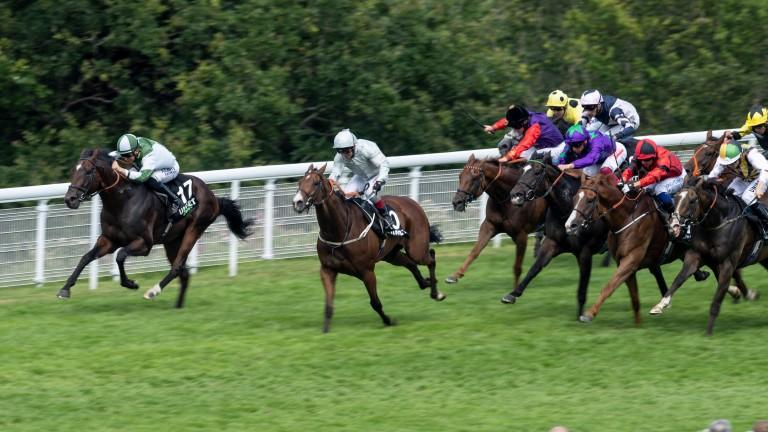 Golden Mile winner Beat Le Bon returns to Goodwood