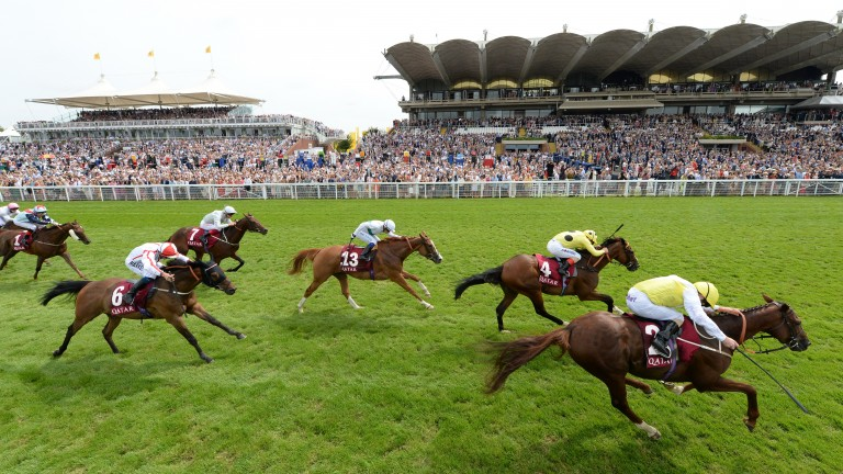 King's Advice displays his usual battling qualities to win at Glorious Goodwood