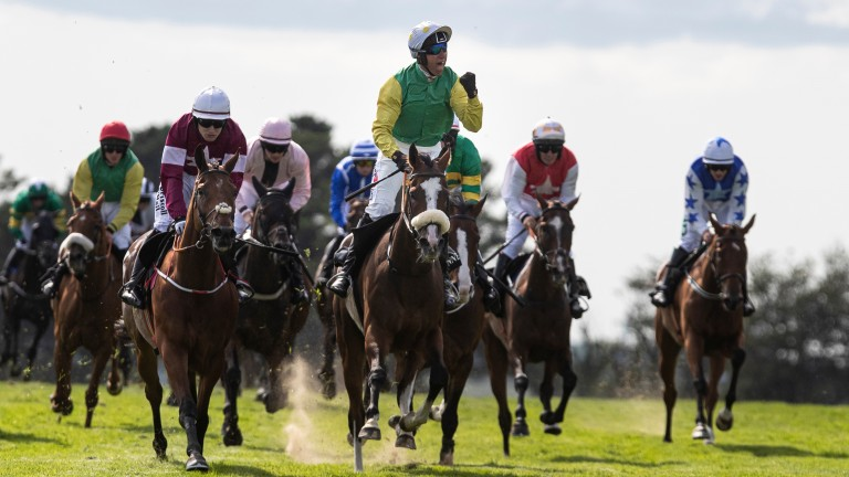 Can Tudor City win a second Galway Hurdle this week?