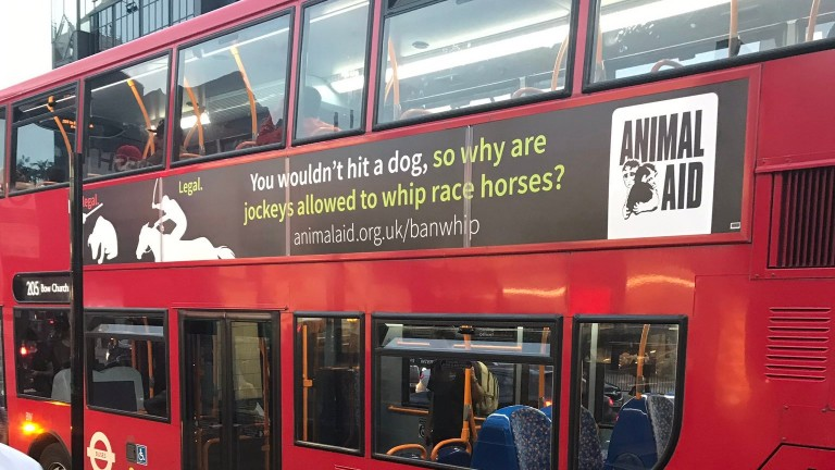 Animal Aid's controversial ad campaign last year