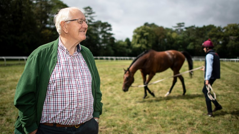 David Elsworth with Sir Dancealot at Egerton House Stables in Newmarket 5.8.19Pic: Edward Whitaker