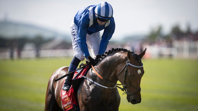 Chris Hayes will partner Madhmoon in the Qipco Irish Champion Stakes