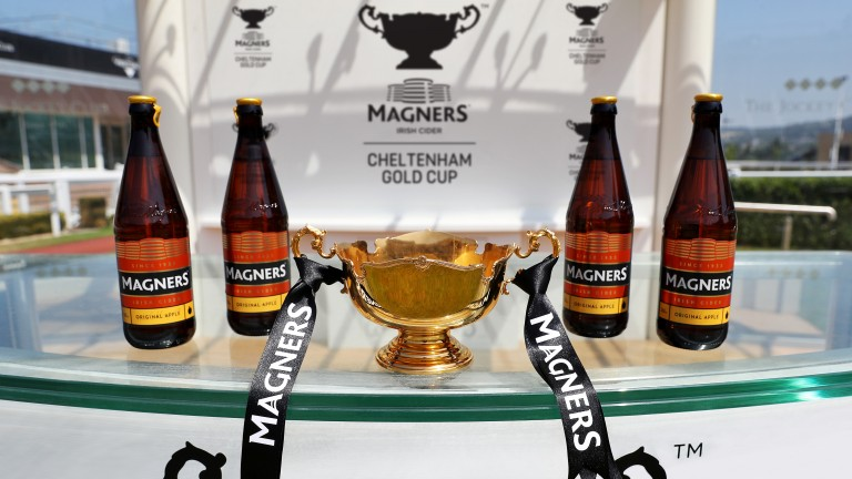 Magners: took over sponsorship of the Cheltenham Gold Cup in 2019