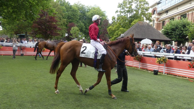 Star Terms and James Doyle return to the Deauville enclosure after going down by a short-head in the Prix Minerve