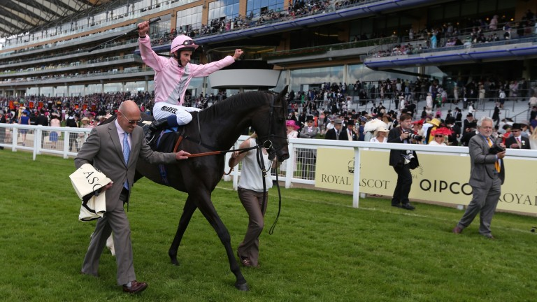 The Fugue after landing the 2014 Prince of Wales's Stakes