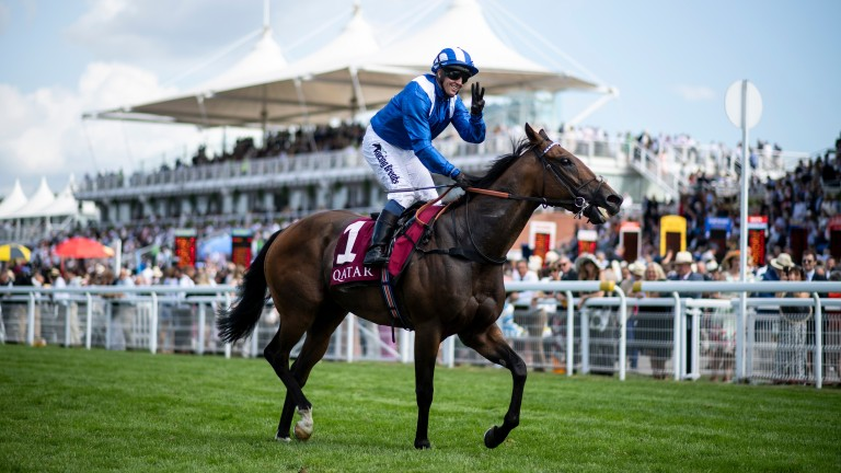 Battaash: will go straight to Royal Ascot without a prep run according to Charlie Hills