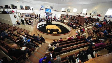 Tattersalls Ireland: 837 lots catalogued to go through the Fairyhouse ring during the August National Hunt Sale